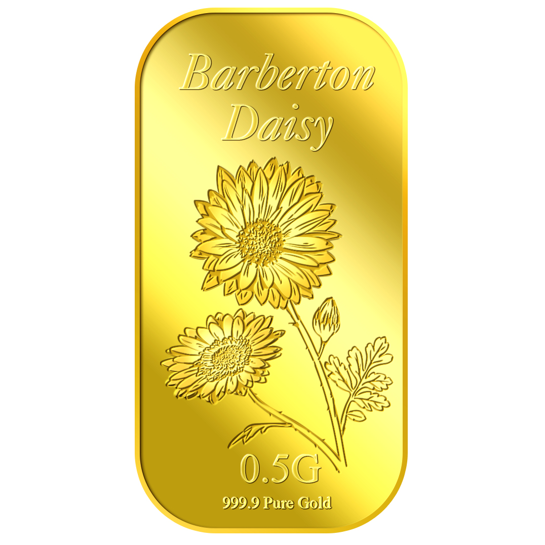 0.5g Daisy Gold Bar